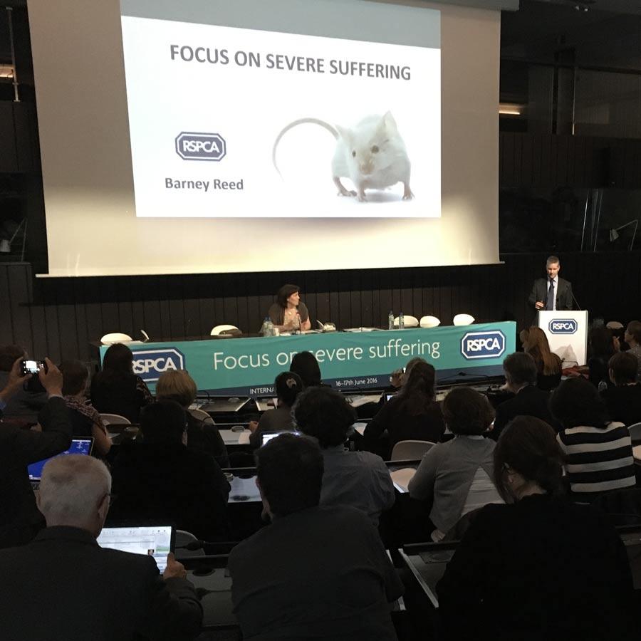1st International Meeting, Brussels, 2016