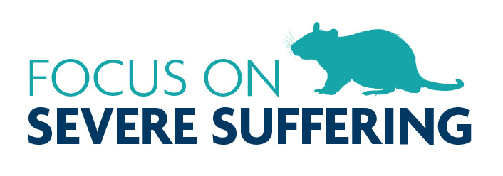 Launch of refreshed website – 'Focus on severe suffering'
